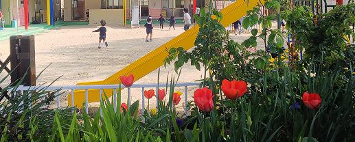 愛の園幼稚園